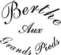 Logo - Strümpfe von Berthe